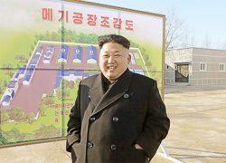 Северная Корея больше не бузит