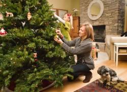 Аспирин поможет елке сохранить праздничный вид