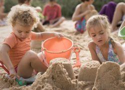 Пляжный сезон в этом году начнется без клещей