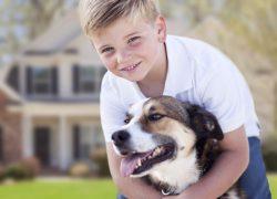 Сердца человека и собаки бьются в унисон