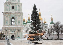 На Софийской площади установили главную елку