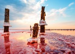 Грязи Куяльника стали розовыми от водорослей