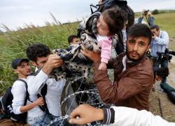 Под Киевом строят лагерь для беженцев  из Сирии