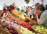Ценники на продукты в Киеве сравнялись с европейскими