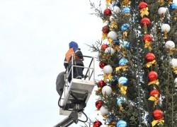 Главная елка страны выше прошлогодней на два метра