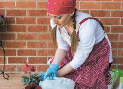 Как сохранить цветы, пока семья в отпуске